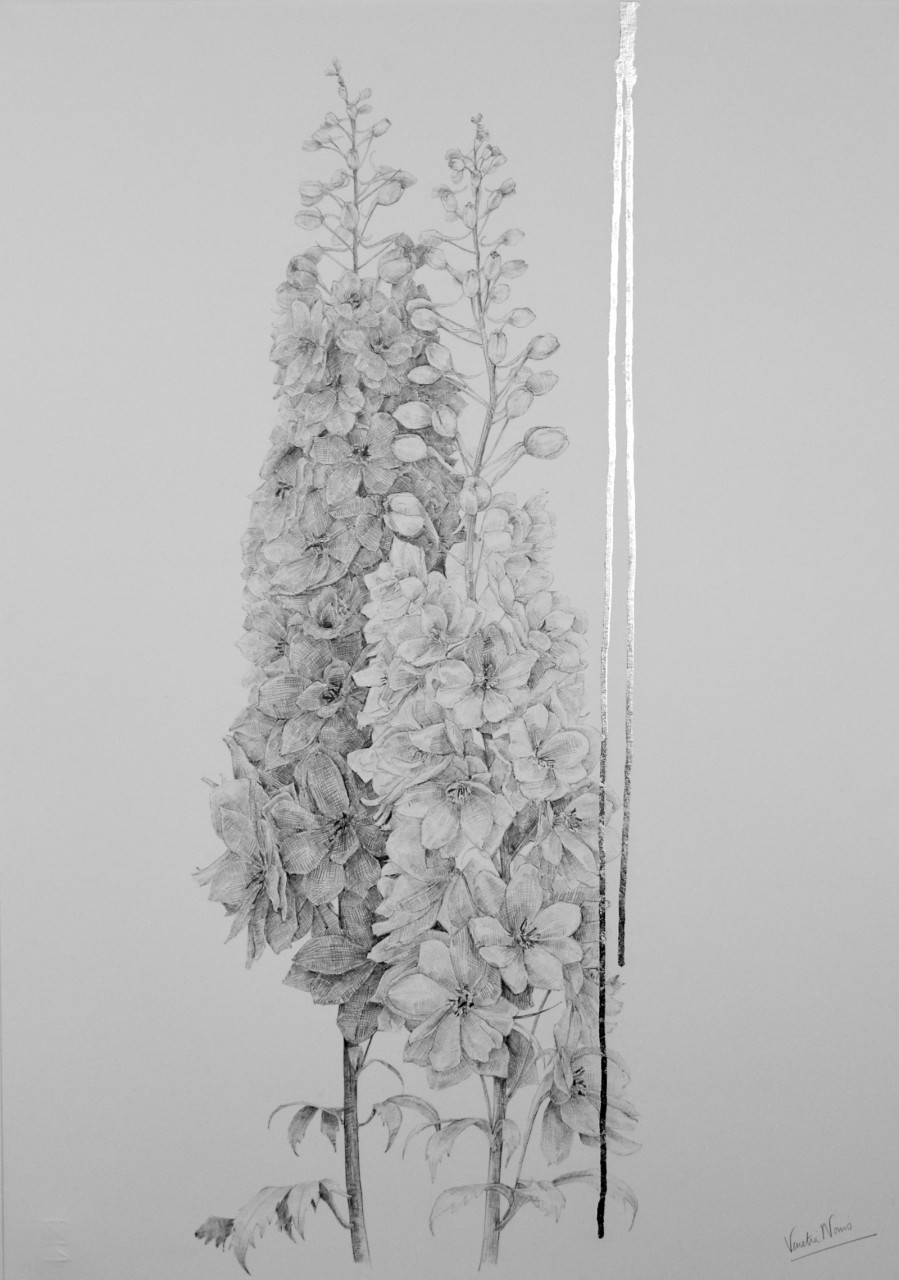Delphinium, graphite and silver leaf, 70x50cm