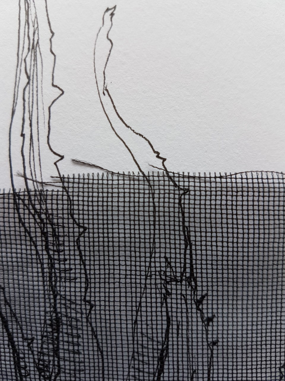 Detail: Veil, mixed media, 20.5x28.5cm